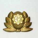 Askeri Türkmenistan arması